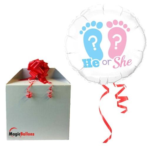 He Or She? Footprints -...