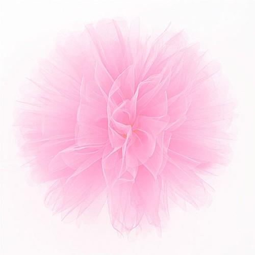 Puff Pom lampion til - pink
