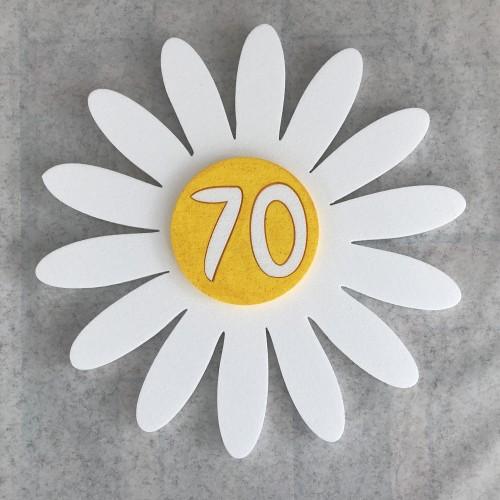 Ruža cvijet 70