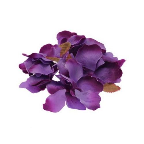 Vijolični lističi vrtnic